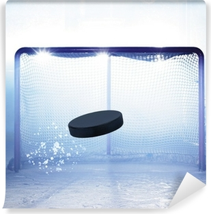 Kendinden Yapışkanlı Duvar Resmi Eishockey tor