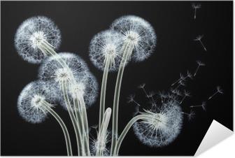 Kendinden Yapışkanlı Poster Çiçek ve bitkiler