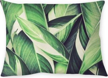 Kissenbezug Frische tropische grüne Blätter Hintergrund