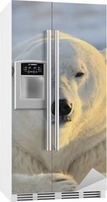 Isbjørn ligger ved tundra. Kjøleskapsklistremerke