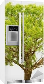 Trær isolert på en hvit bakgrunn. Kjøleskapsklistremerke