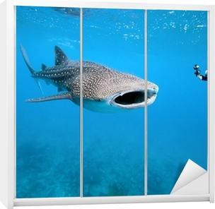 Klesskapklistremerke Hvalhaj og undersjøisk fotograf