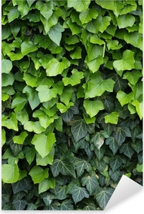 Grøn elv, nærbillede Pixerstick klistermærke