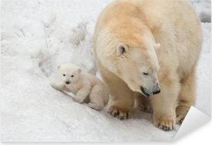 Hvid bjørn Pixerstick klistermærke