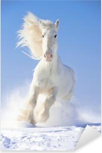 Hvid hestehest løber galop i frontfokus Pixerstick klistermærke