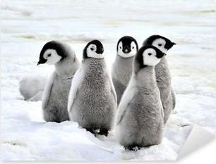Kejser pingvin Pixerstick klistermærke