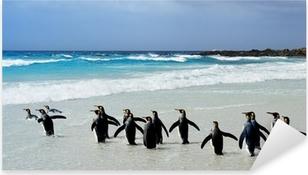 Kong Pingviner Pixerstick klistermærke