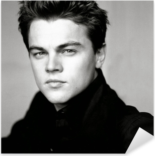 Leonardo DiCaprio Pixerstick klistermærke