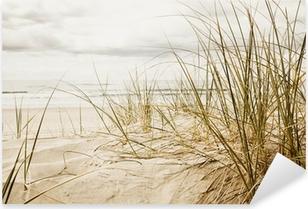 Nærbillede af et højt græs på en strand i overskyet årstid Pixerstick klistermærke