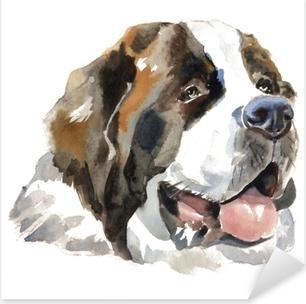 St. bernhardshund hund portræt Pixerstick klistermærke