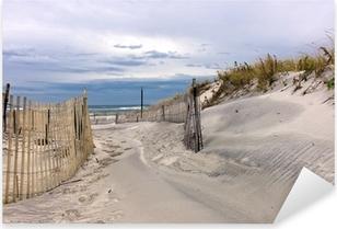 Sti gennem klitter på en strand på Long Island, New York Pixerstick klistermærke