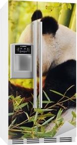 Stor panda sidder på skovbunden, der spiser bambus Køleskab klistermærke