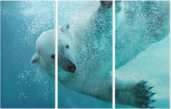 Jääkarhujen vedenalainen hyökkäys Kolmiosainen