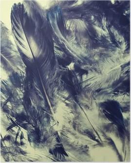 Feather Korkealaatuinen Juliste