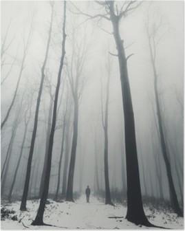 Mies metsään ja korkeita puita talvella Korkealaatuinen Juliste
