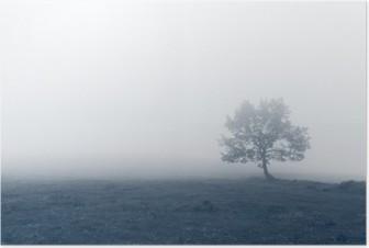 Yksinäinen puu sumuilla Korkealaatuinen Juliste