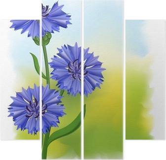 488d37ca5e8f86 Fototapeta Kwiaty niebieski chaber (Centaurea cyanus). Ilustracji  wektorowych. • Pixers® - Żyjemy by zmieniać