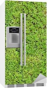Kylskåpsdekor Grön mossa bakgrund