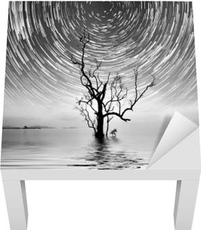 Lack-bord finér Alene tre og stjerne sti fotografering for ditt interiør.