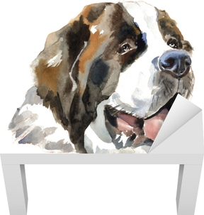 Lack-bord finér St. bernhardshund hundportrett