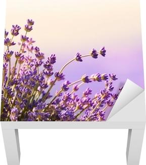 Laventeli kukat kukkivat kesäaikaa Lack-pöydän Pinnoitus
