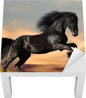 Black horse galloping in the sunset Lack Table Veneer