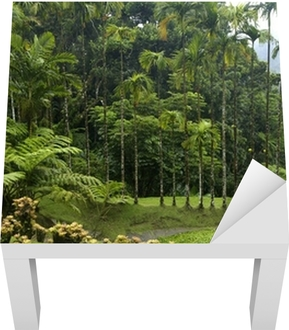 France, Martinique, jardin de Balata Poster • Pixers® • We live to ...
