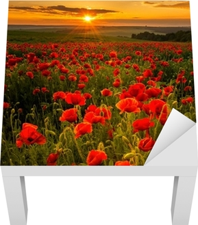 Poppy field at sunset Lack Table Veneer
