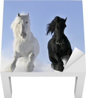 white and black horse Lack Table Veneer