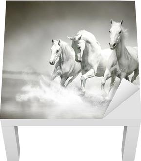 Lack-Tischaufkleber Herde von weißen Pferden, die durch Wasser
