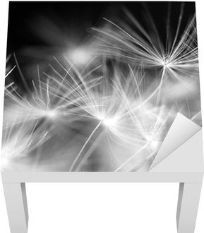 Lack-Tischaufkleber Makro Schönheit Dandelion