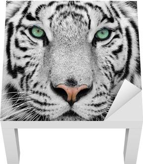 Lack-Tischaufkleber Weiße tiger