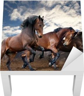 Lack-Tischaufkleber Wilden Sprung Bucht Pferde