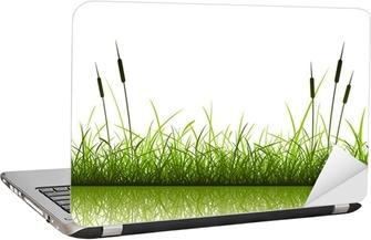 Laptop-Aufkleber Gras und Schilf mit Reflexion in Wasser
