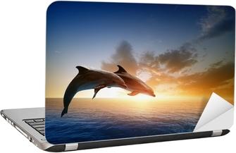 Laptop Sticker Dolfijnen springen