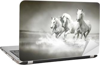 Herd of white horses running through water Laptop Sticker