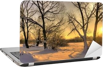 Vakker vinter solnedgang med trær i snøen