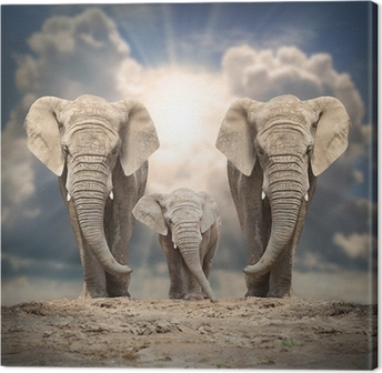 Leinwandbild Afrikanische Elefantenfamilie auf der Straße.