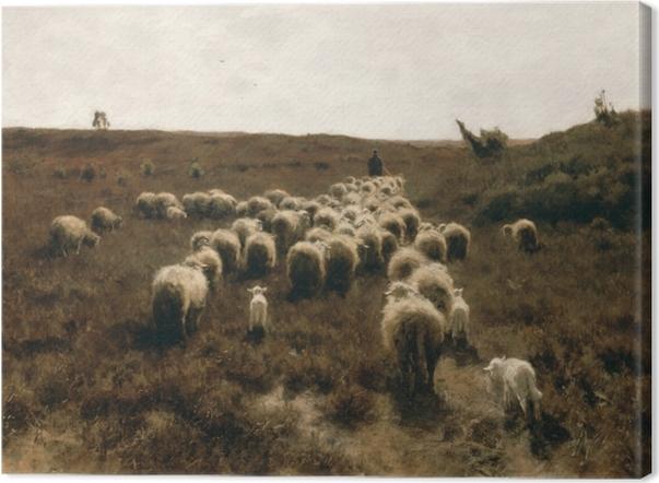 Leinwandbild Anton Mauve - Rückkehr der Herde, Laren - Reproductions