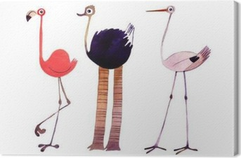 Leinwandbild Aquarell Vogel gesetzt. Flamingo, Strauß, Storch Hand bemalt Illustration