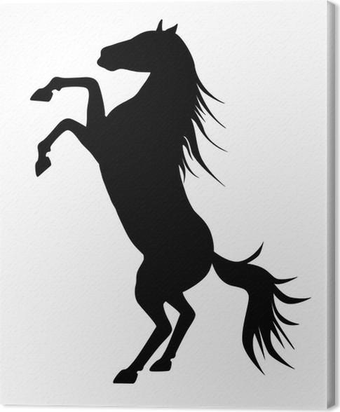 Leinwandbild Aufbäumen Anmutige Schwarze Silhouette Pferd, Vektor Vor Weißem