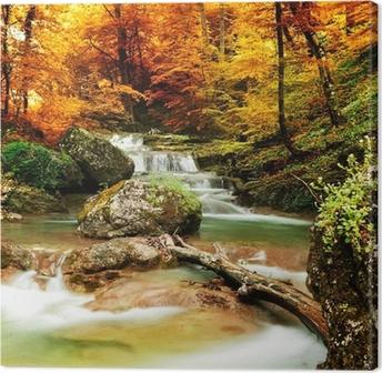Leinwandbild Autumn creek Wald mit gelben Bäume