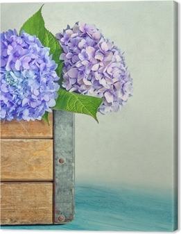 Leinwandbild Blaue Hortensien Blüten in einer Holzkiste