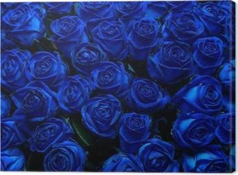Leinwandbild Blaue Rosen