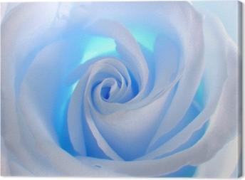 Leinwandbild Blue Rose