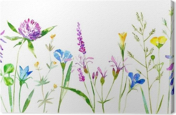 Leinwandbild Blumengrenze von wilden Blumen und von Kräutern auf ...