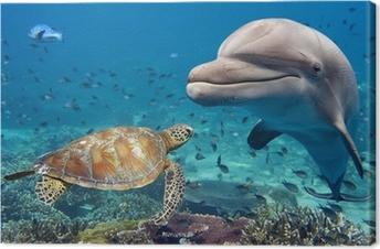 Leinwandbild Delphin und Schildkröte unter Wasser auf Riff