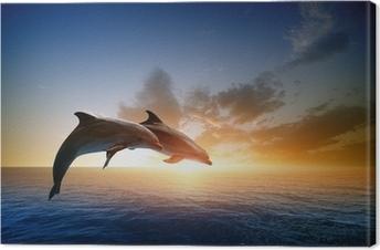 Leinwandbild Delphine springen