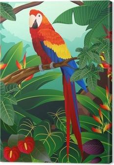 Leinwandbild Detaillierte Ara Vogel Vektor