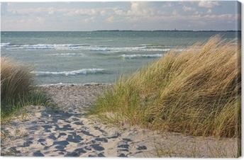 Leinwandbild Dünenlandschaft am Strand der Ostsee bei Heiligenhafen